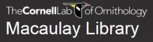 Macaulay logo