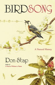 Stap book cover